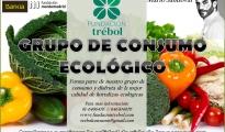 GRUPO DE CONSUMO DE LA FUNDACIÓN TRÉBOL